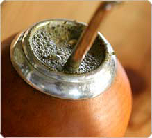 yerba_mate_ps-1